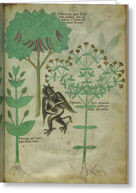 Plant And A Demon Greeting Card