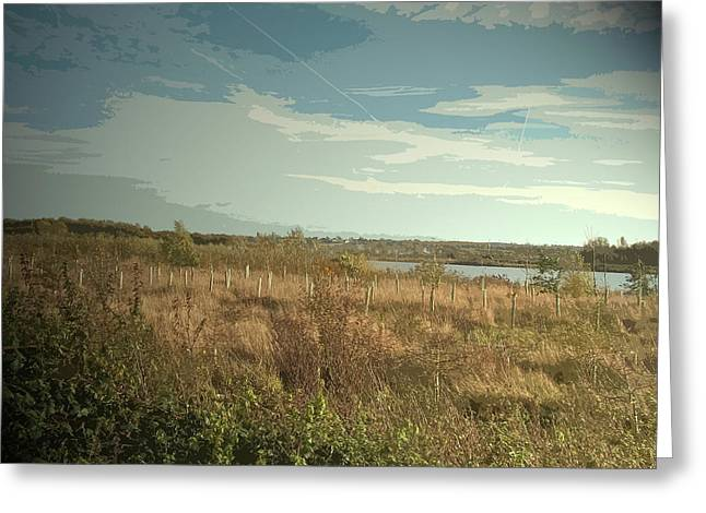 Plantation At Willington Gravel Pits, Saplings And Pond Greeting Card by Litz Collection