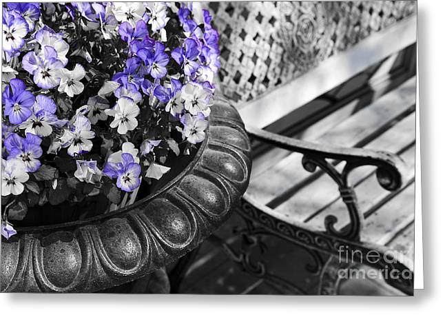 Planter With Pansies And Bench Greeting Card