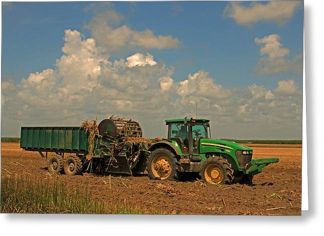 Planting Sugarcane In Louisiana Mechanically Greeting Card by Ronald Olivier