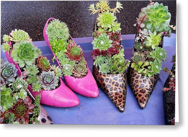 Plants In Pumps Greeting Card