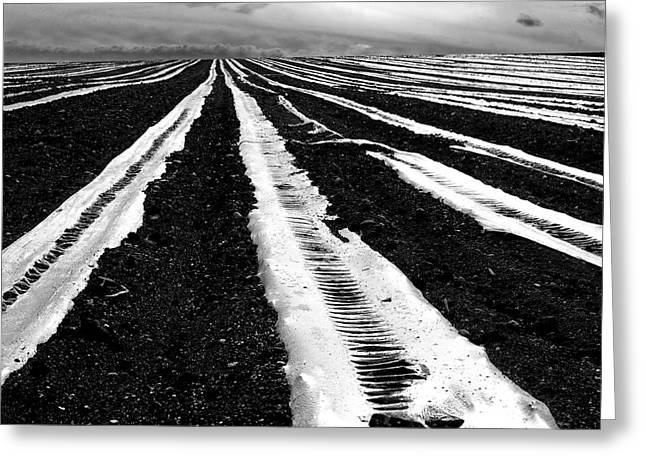 Plastic Tarp In A Field. Auvergne. France Greeting Card by Bernard Jaubert