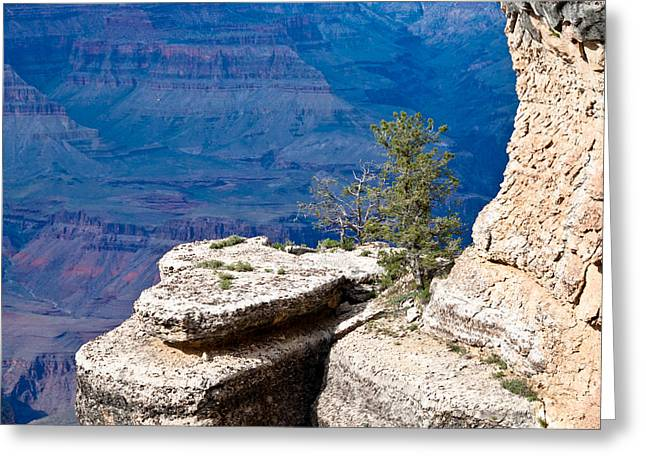 Plateau In Canyon Greeting Card by Nickaleen Neff