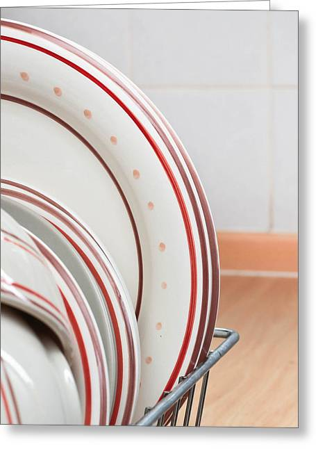 Plates Drying Greeting Card by Tom Gowanlock
