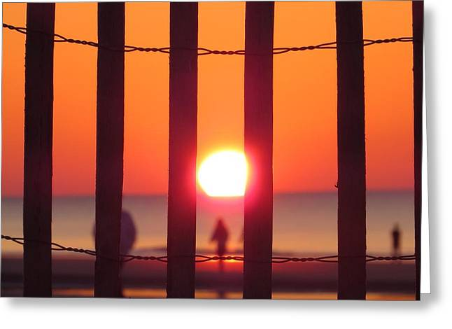 Play Through The Fence Greeting Card by Nikki McInnes