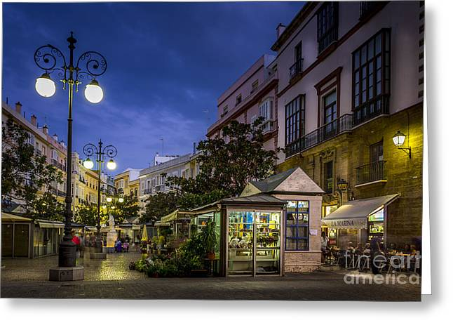 Plaza De Las Flores Cadiz Spain Greeting Card