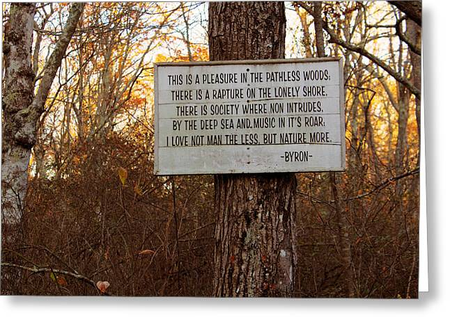 Pleasure In The Pathless Woods Greeting Card