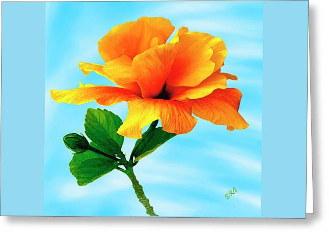 Pleasure - Yellow Double Hibiscus Greeting Card by Ben and Raisa Gertsberg