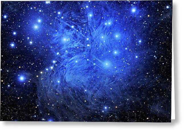 Pleiades Star Cluster Greeting Card by Tony & Daphne Hallas