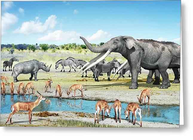 Pliocene Fauna Greeting Card by Jose Antonio Pe�as