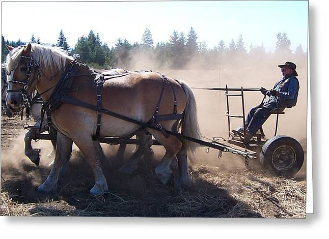 Plough Horses At Work Greeting Card