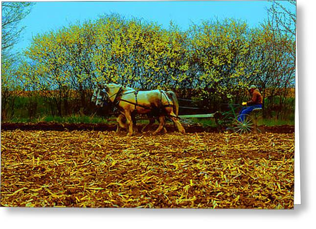 Greeting Card featuring the photograph Plow Days Freeport  Tom Jelen by Tom Jelen