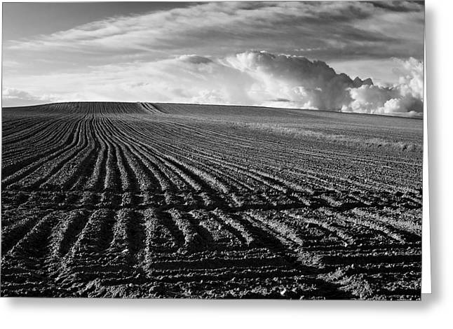 Plowed Field In Limagne. Auvergne. France Greeting Card by Bernard Jaubert