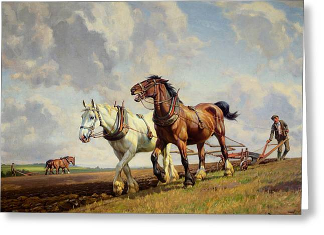 Plowing The Field Greeting Card