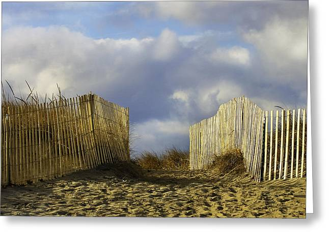 Greeting Card featuring the photograph Plum Island Fence by Betty Denise