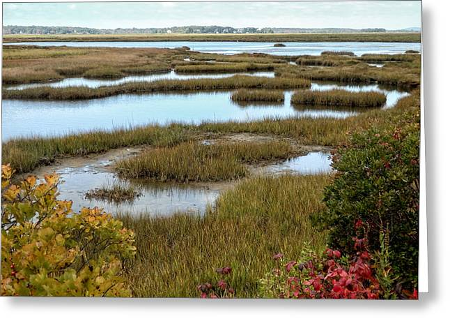 Plum Island Marshes In Autumn 2 Greeting Card