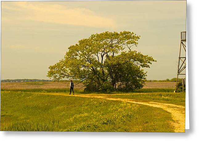 Plum Island Summer Afternoon Greeting Card