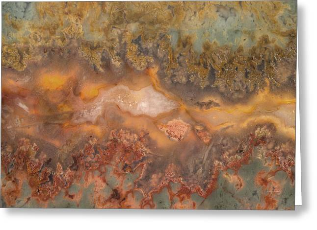Plume Agate Greeting Card by Leland D Howard