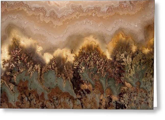 Plume Agate Shape And Form Greeting Card by Leland D Howard