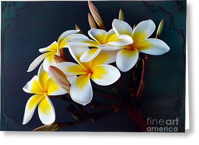Plumeria Bouquet 2 Greeting Card by Kaye Menner