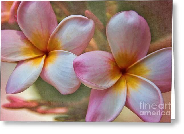 Plumeria Pair Greeting Card by Peggy Hughes