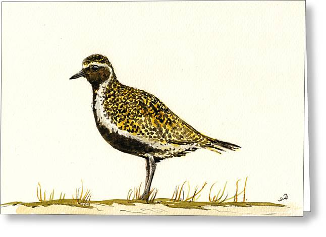 Pluvialis Apricaria Greeting Card