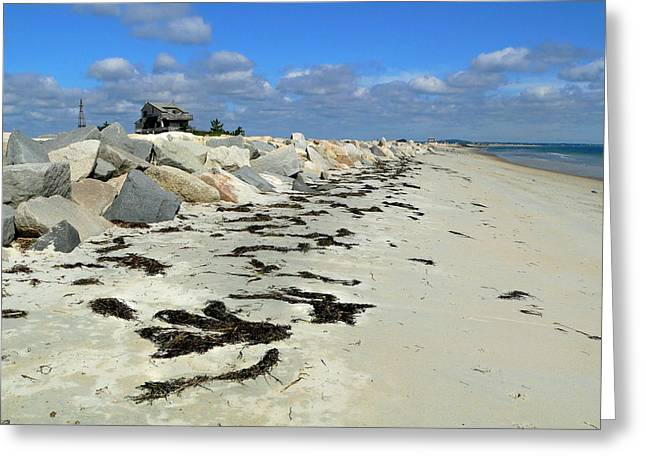 Greeting Card featuring the photograph Plymouth Long Beach In Massachusetts  by Janice Drew