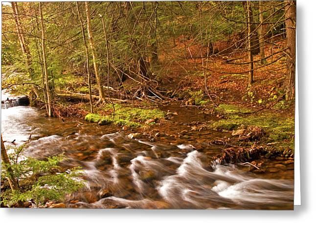 Pocono Mountain Stream Pennsylvania Greeting Card by A Gurmankin