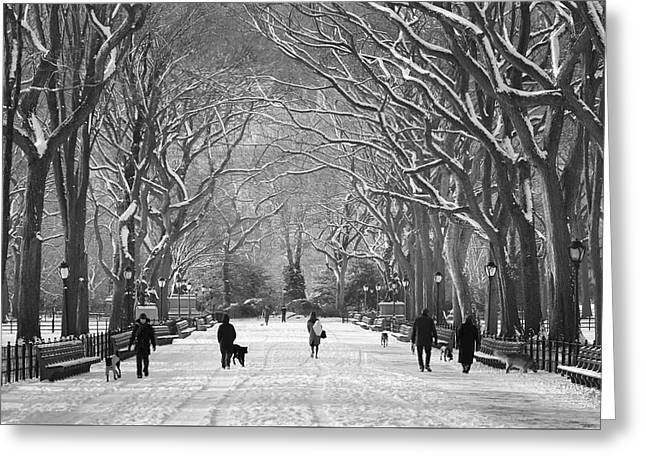 New York City - Poets Walk Winter Greeting Card