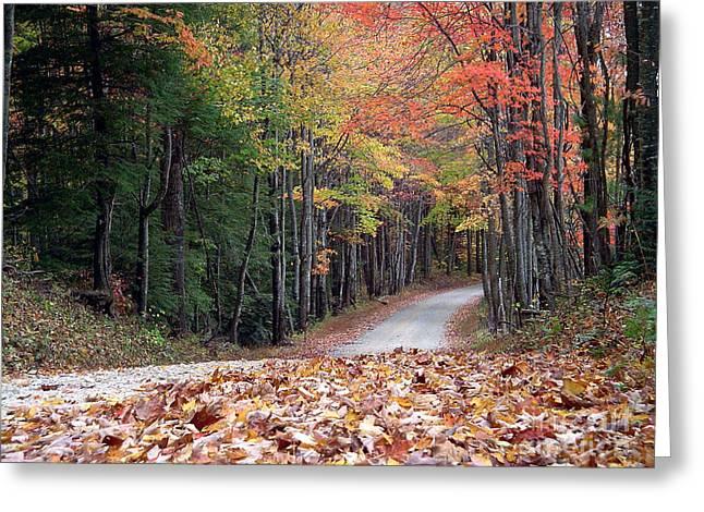 Poga Autumn Greeting Card by Annlynn Ward