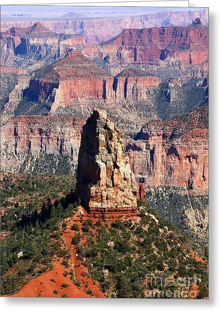 Point Imperial - North Rim Grand Canyon Greeting Card by Christiane Schulze Art And Photography