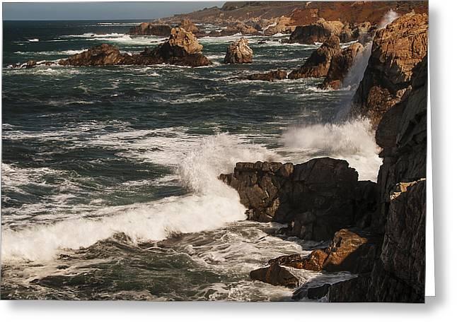 Point Lobos 2 Greeting Card by Lee Kirchhevel