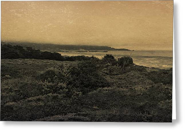 Point Lobos - An Antique Take Greeting Card by Angela A Stanton