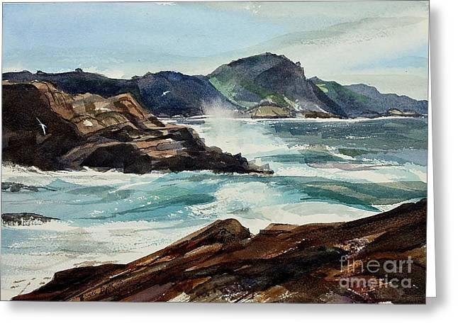 Point Lobos California Greeting Card by Bruce Repei