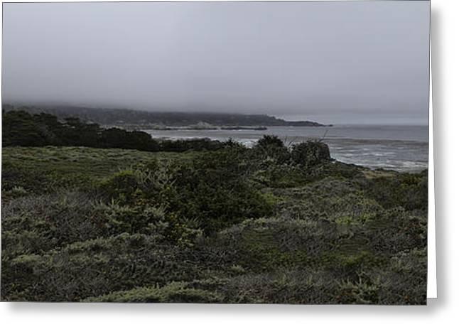 Point Lobos National Park Greeting Card
