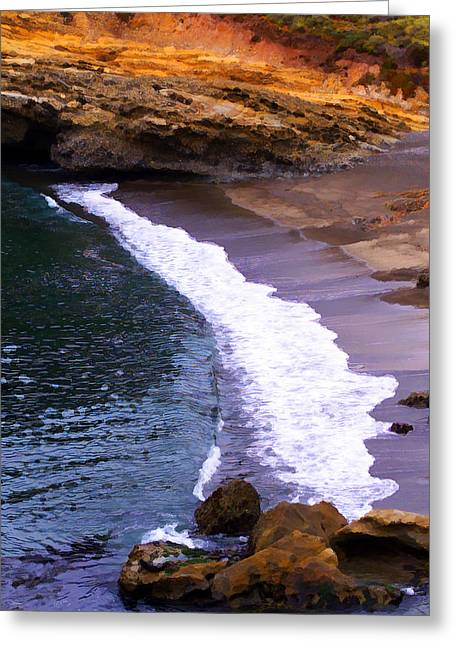 Point Lobos Greeting Card by Ron Regalado