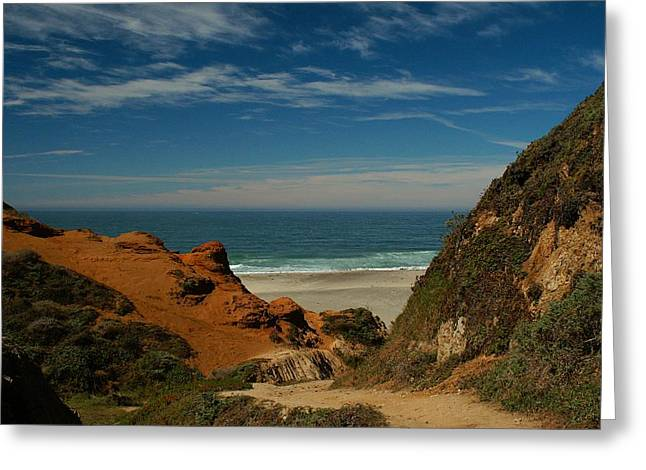 Point Reyes - North Shore Greeting Card