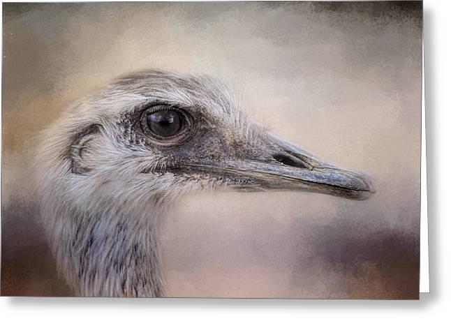 Poised - Ostrich - Wildlife Greeting Card by Jai Johnson
