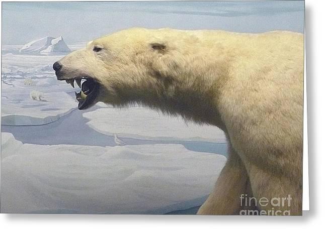 Polar Bear Diorama Greeting Card