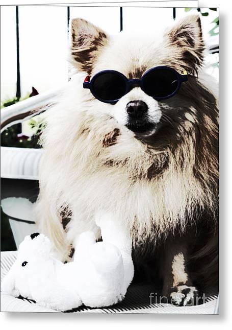 Polar Bear Helps Cool Off Greeting Card