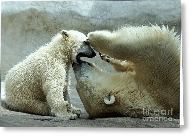 Polar Bear Mom And Cub Greeting Card