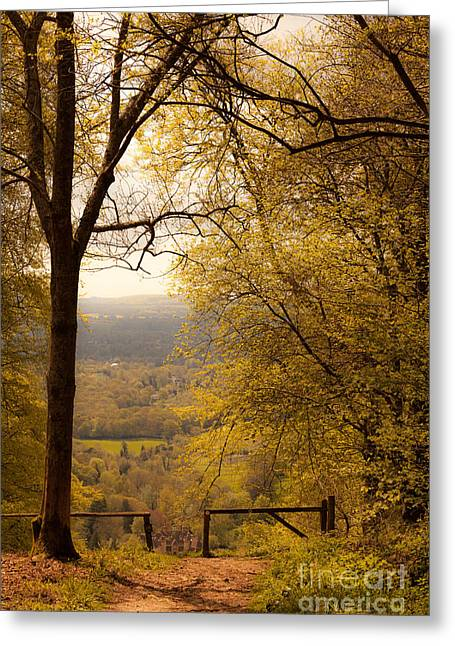 pole fence at top of picturesque view of Steep from Ashford Hang Greeting Card