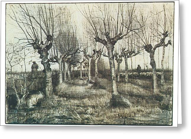 Pollarded Birches With Woman And Flock Of Sheep Greeting Card by Vincent van Gogh