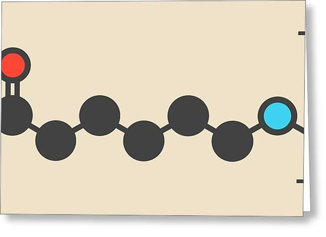 Polycaprolactam Polymer Molecule Greeting Card by Molekuul