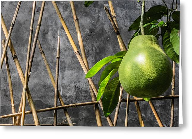 Pomelo Greeting Card by Karen Saunders