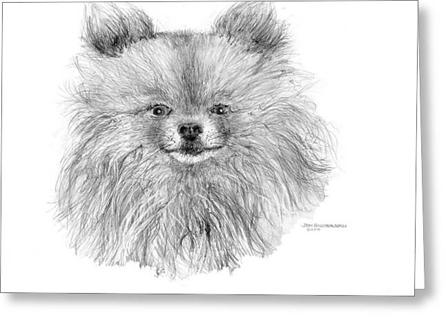 Greeting Card featuring the drawing Pomeranian by Jim Hubbard