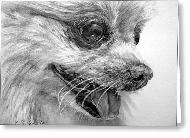 Pomeranian Greeting Card by Kelly Brown
