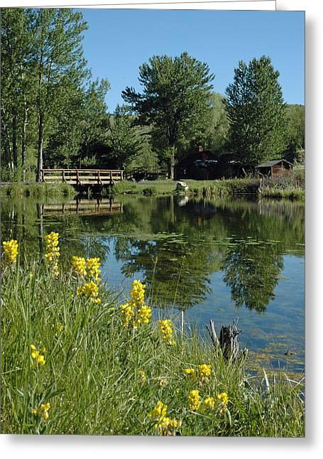 Pond And Bridge At Virginia City Montana Greeting Card