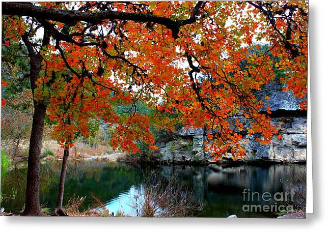 Fall At Lost Maples State Natural Area Greeting Card