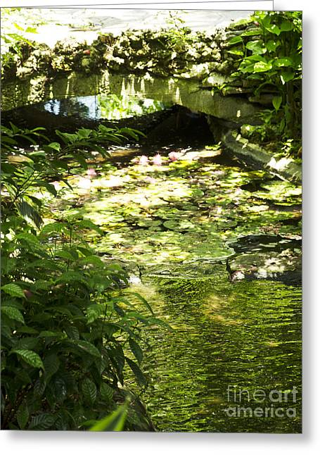 Pond Bridge Greeting Card